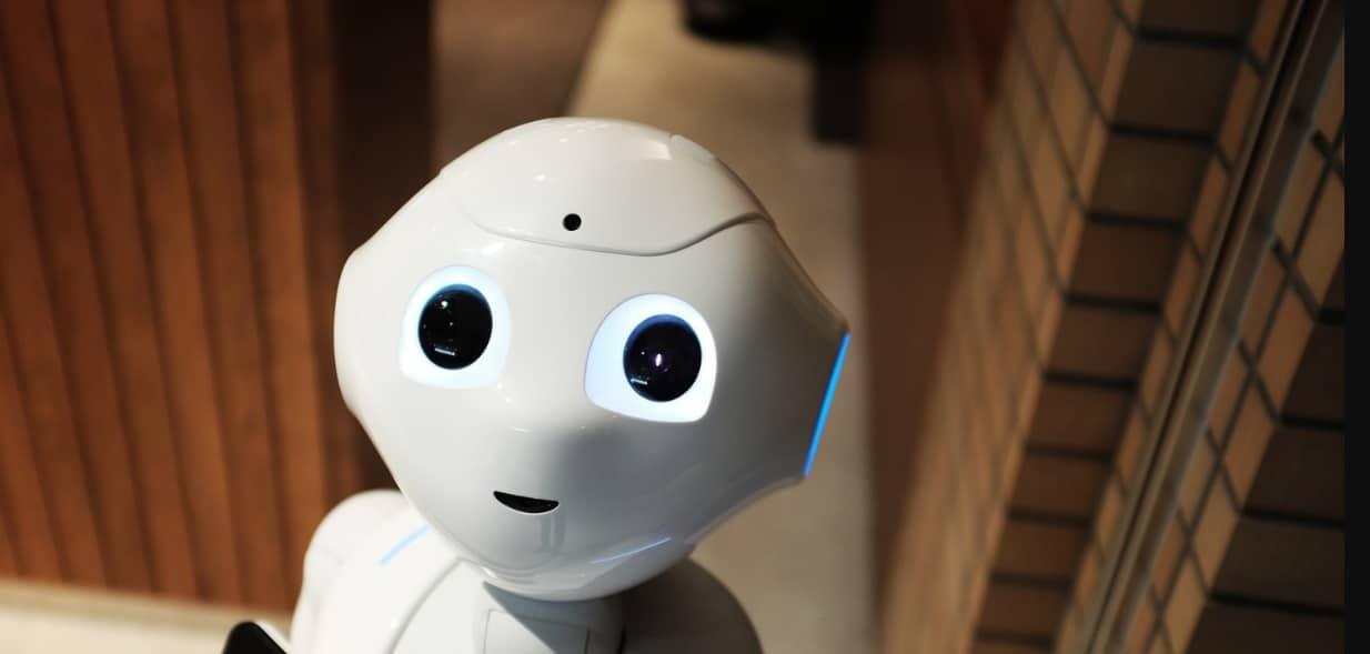 Covid-19 : le robot high tech de compagnie pour palier l'isolement et la solitude